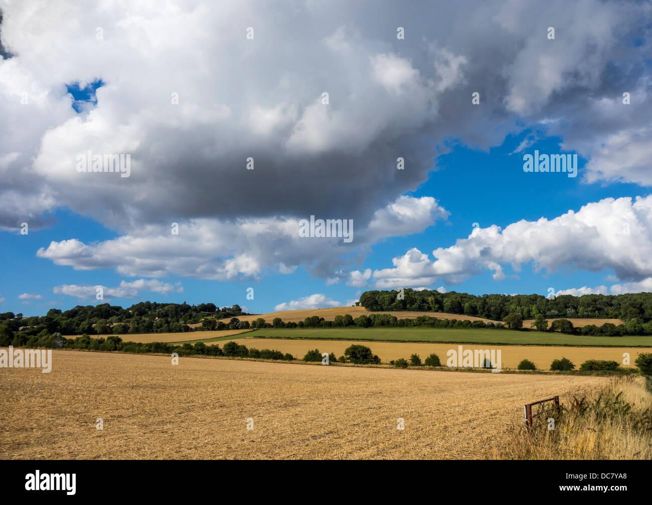 Grafschaft Kent North Downs bei Charing Stockbild