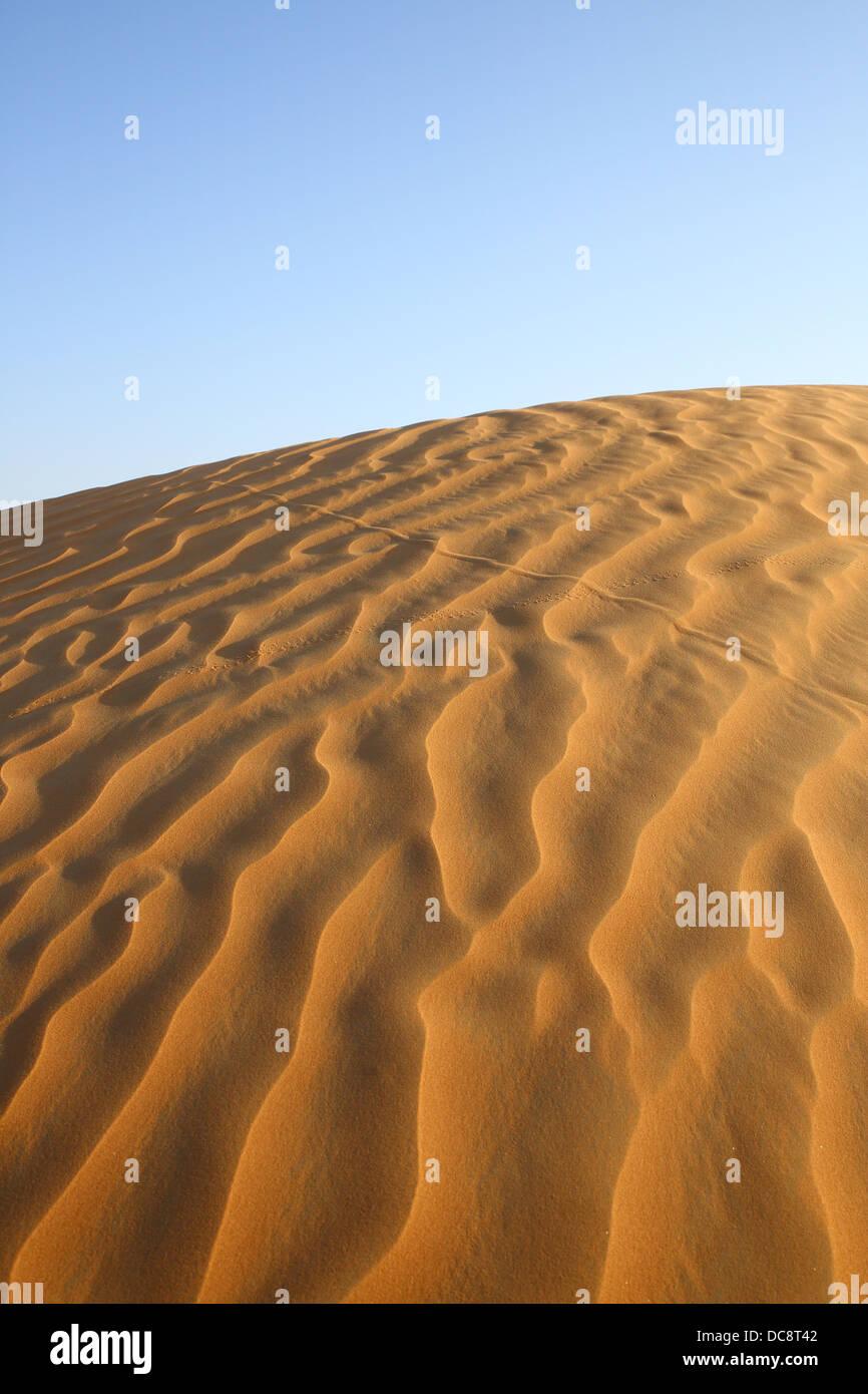 Sanddüne in der arabischen Wüste, Dubai, Vereinigte Arabische EmiratesDubai, Vereinigte Arabische Emirate Stockbild