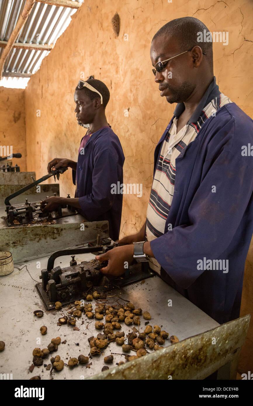 gambische Männer