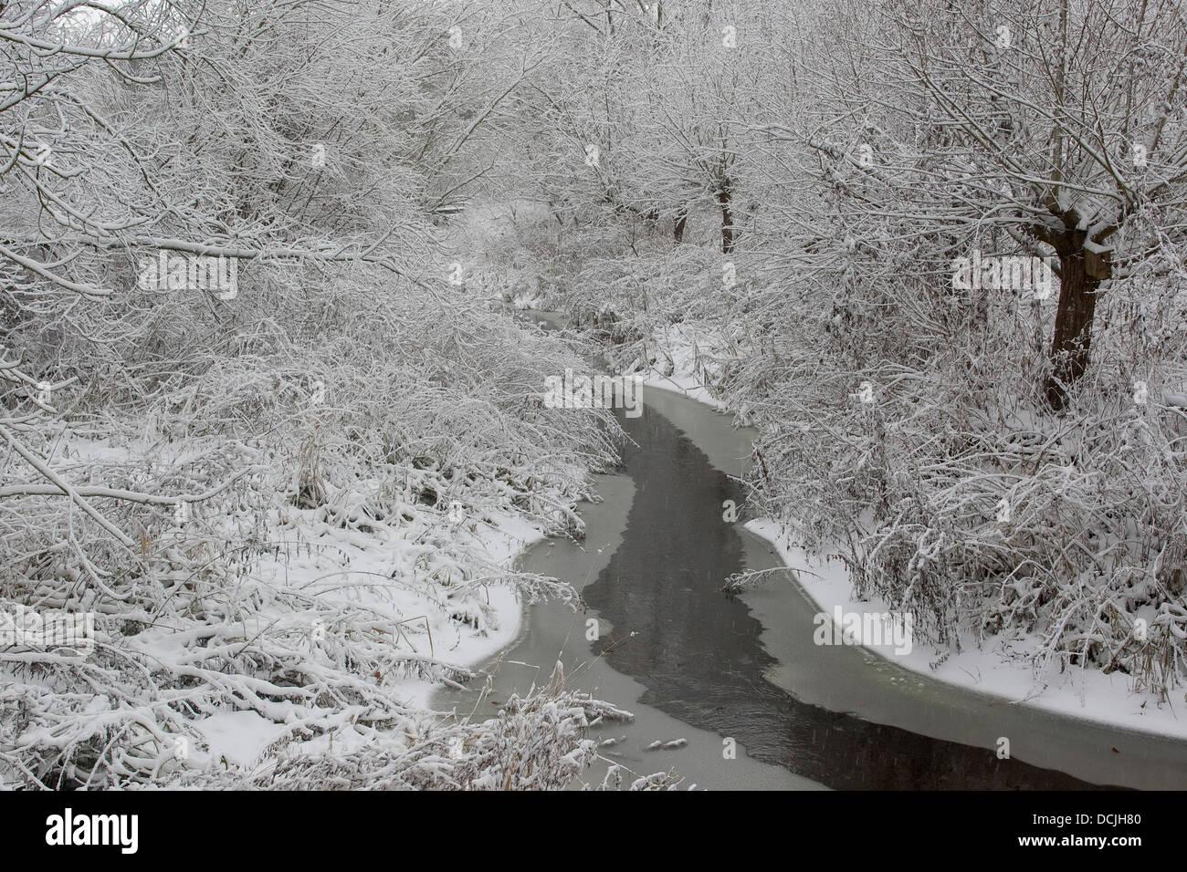 Bach, Fluss, Bach, Bach, naturnaher flachlandbach, Bach, induktionskopfhörern, Fluss, Winter, Schnee, Eis, Stockbild