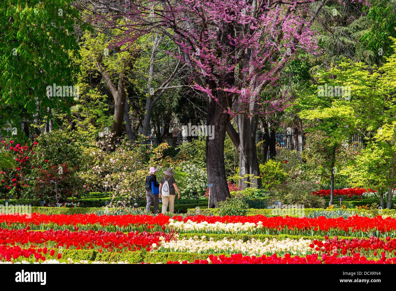 Madrid, Botanischer Garten Stockbild