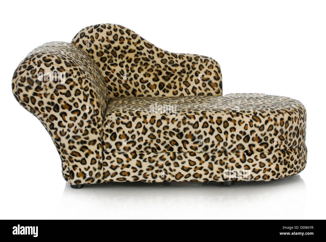 Faszinierend Ausgefallene Couch Ideen Von Hundebett - Hund Mit Reflexion Isoliert Auf