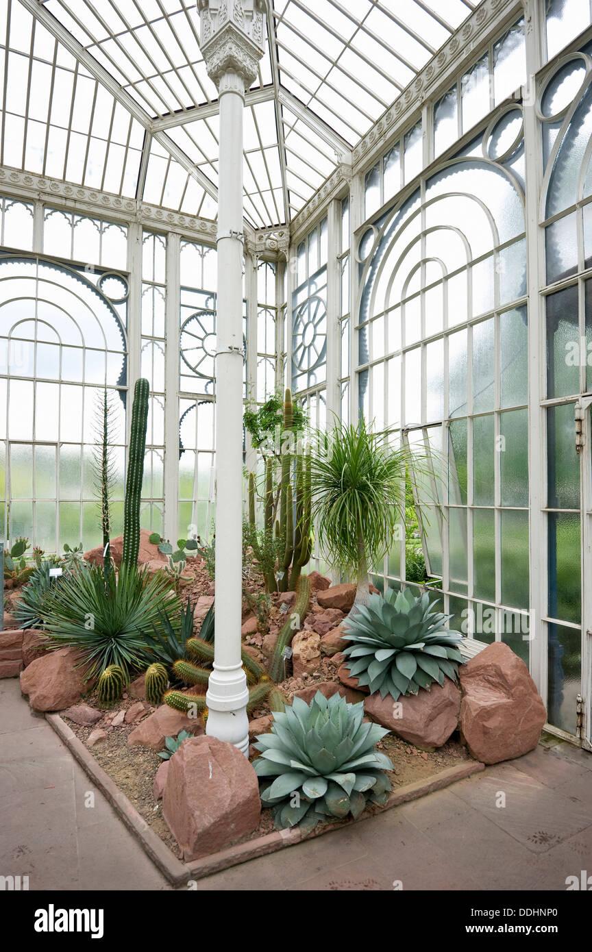 Gewachshaus Mit Kakteen Wilhelma Zoo Und Botanischer Garten