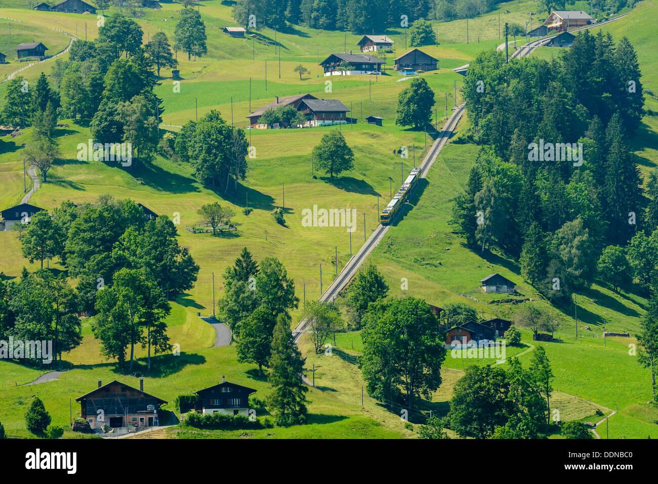 Wengernalpbahn Zug auf Pisten in der Nähe von Grindelwald, Schweiz Stockbild