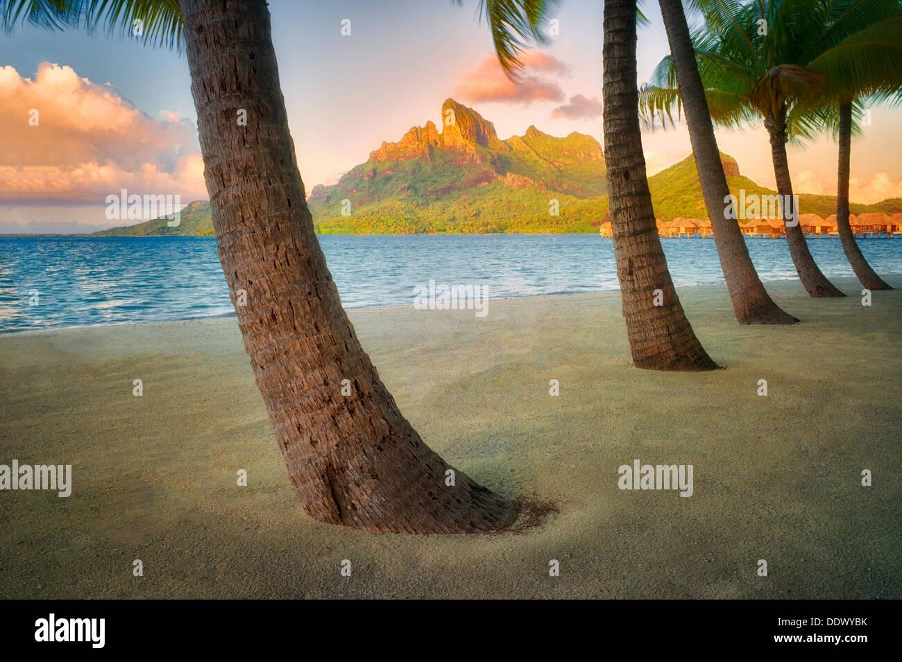 Sandstrand mit Palmen und Mt. Otemanu. Bora Bora. Französisch-Polynesien. Stockbild
