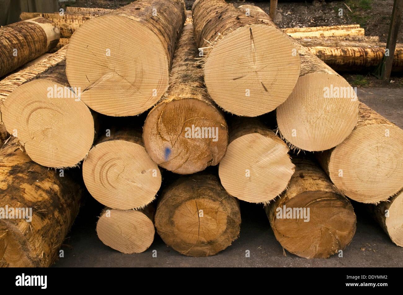 Sägewerk Holzhandel Protokolle Holzlagerung Holz Bauholz