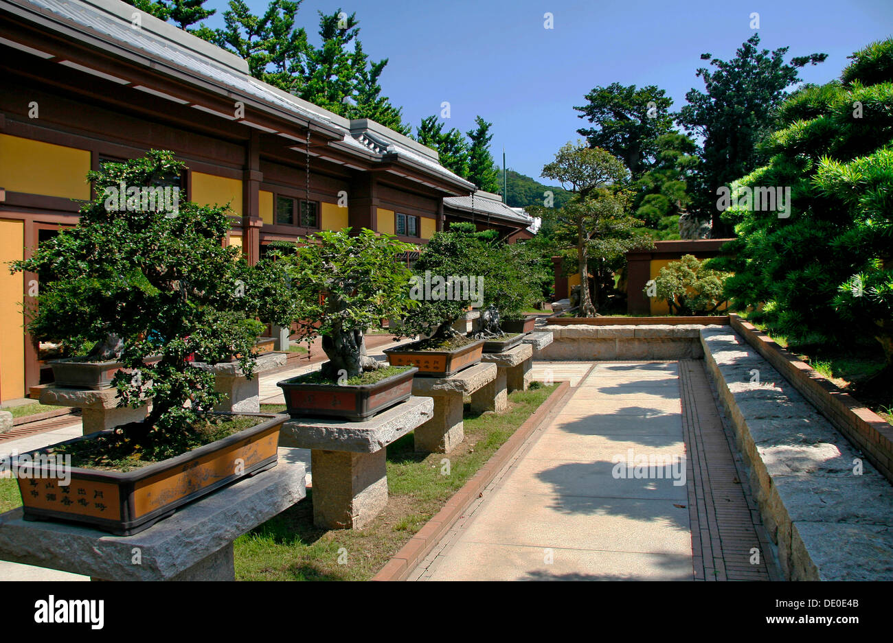 bonsai exhibition stockfotos bonsai exhibition bilder alamy. Black Bedroom Furniture Sets. Home Design Ideas
