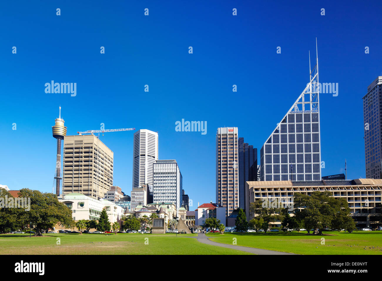 Die Domain, Sydney, Australien Stockbild