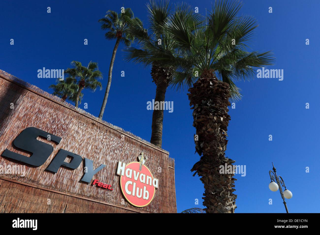 Zypern, Larnaca, Havana Club, Werbung, Palmen Stockbild