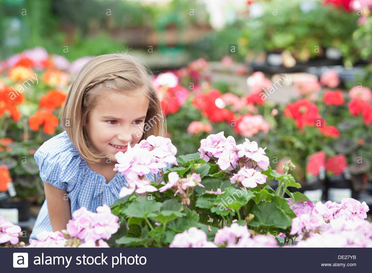 Mädchen, die duftenden Blumen in Gärtnerei Stockbild