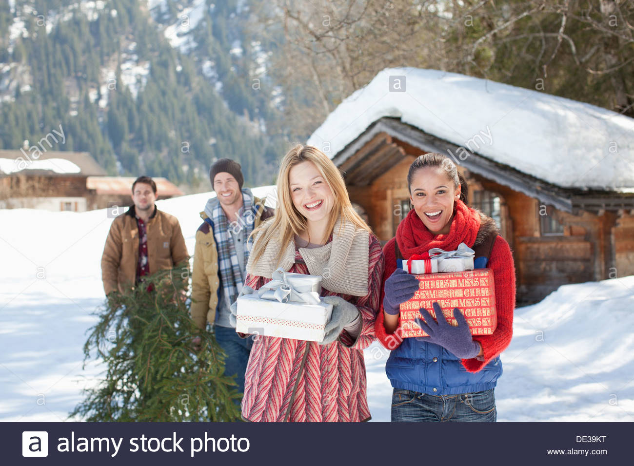 hut log cabin stockfotos hut log cabin bilder alamy. Black Bedroom Furniture Sets. Home Design Ideas