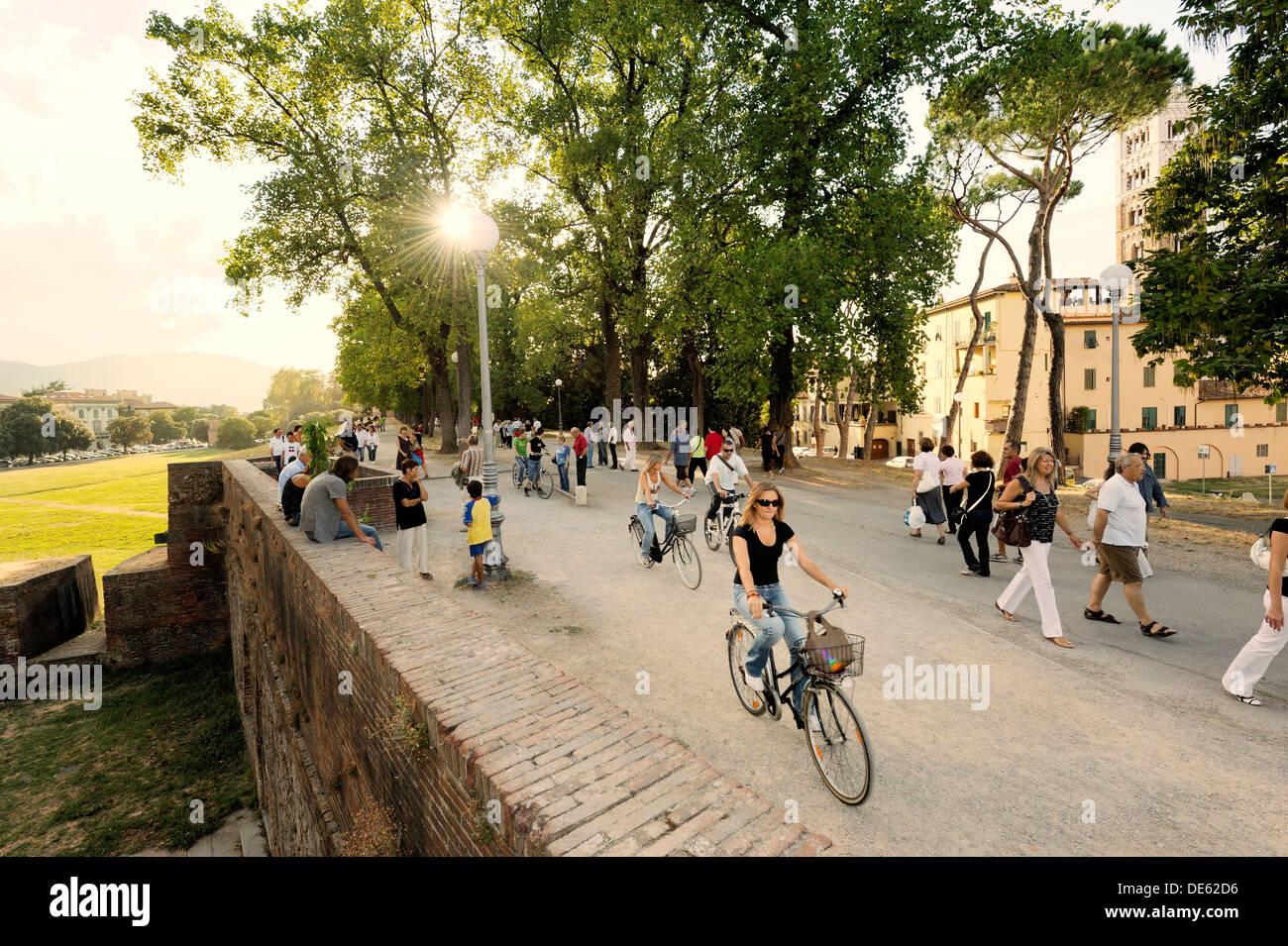 Italienische Stadt Lucca. Anwohner promenade und radeln Sie entlang der mittelalterlichen Stadtmauern Sommerabend. Toskana, Italien Stockbild