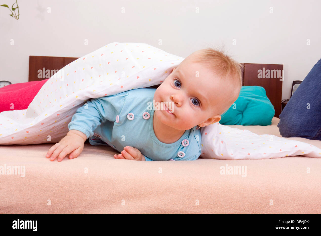 baby 1 jahr auf dem bett stockfoto bild 60470310 alamy. Black Bedroom Furniture Sets. Home Design Ideas