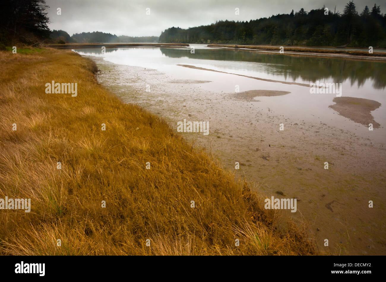 OREGON-der Süden Slough aus dem Marshside Sporn-Pfad in der südlichen Slough Mündungs nationale Reserve. Stockfoto