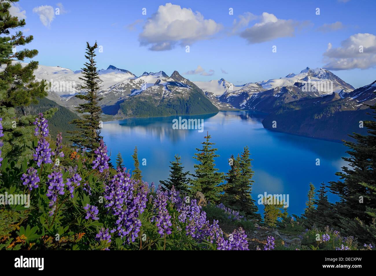 Garibaldi see von panorama ridge garibaldi provincial for Wildparks in der nahe
