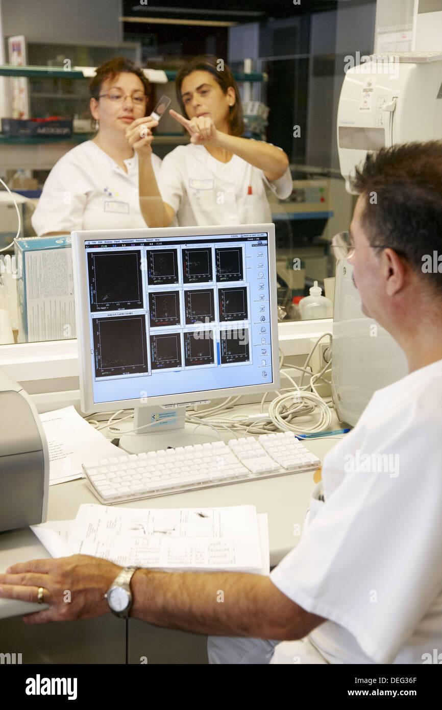Hämatologie, Probe, Ergebnisse der Analyse auf dem Bildschirm betrachten. Hospital Universitario de Gran Canaria Doctor Negrin, Las Palmas Stockbild