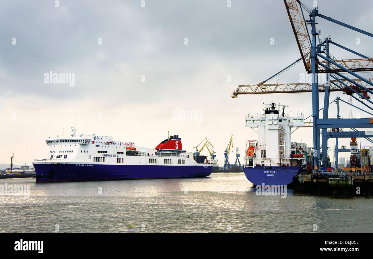 Belfast Hafen, Hafen von Belfast, Nordirland. Passagier-Fähre Stena Lagan vorbeifahrenden Behälter Andocken Anlage in Westbank Stockbild