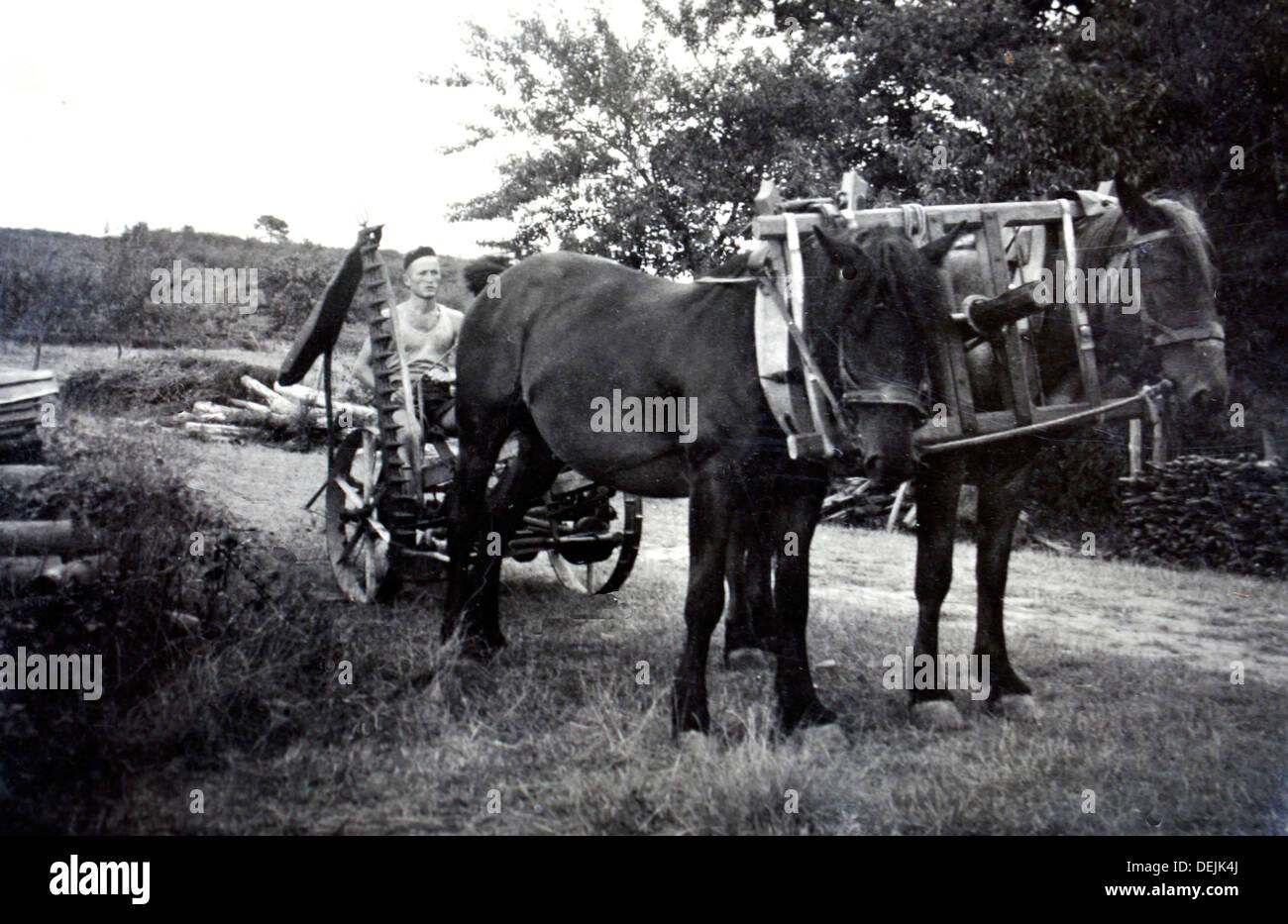 Junger Herr Gessler, bei seiner Ankunft in der Schweiz vor dem Start der Domaine de Joÿ Wein und Armagnac Estate, Panjas, Gers, Stockbild