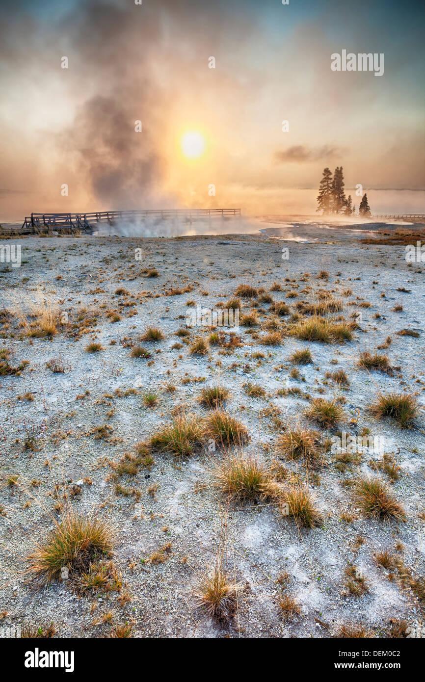 Dampf steigt von Geysir bei Sonnenaufgang, Yellowstone-Nationalpark, Wyoming, Vereinigte Staaten von Amerika Stockbild