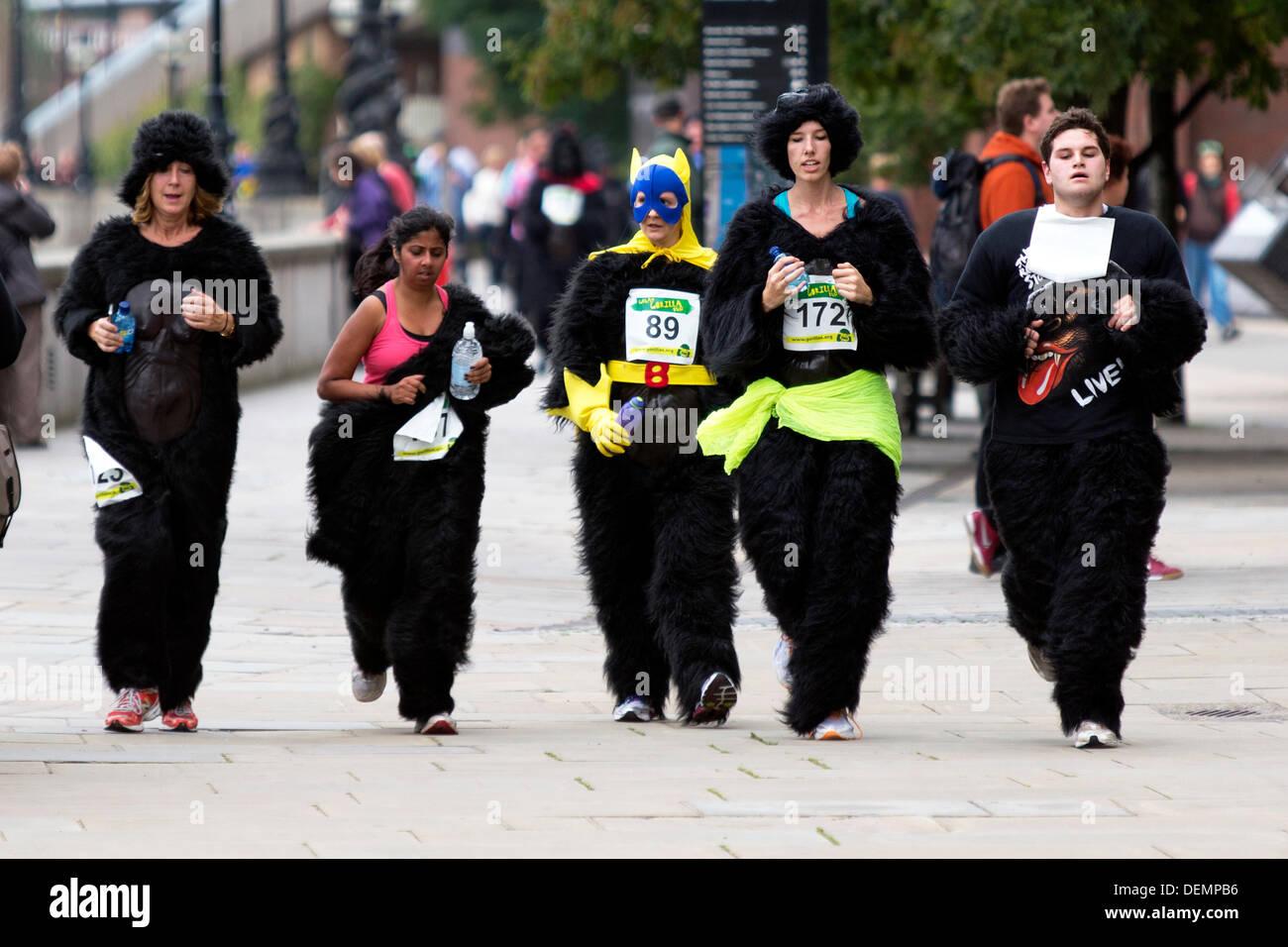 London, UK. 21. September 2013. Die großen Gorilla eine Charity run zugunsten der Gorilla Organization, London, Stockfoto