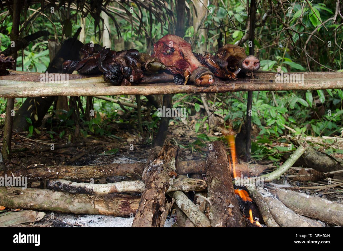 Nachhaltige Jagd Amazoniens Peru Buschfleisch Stockbild
