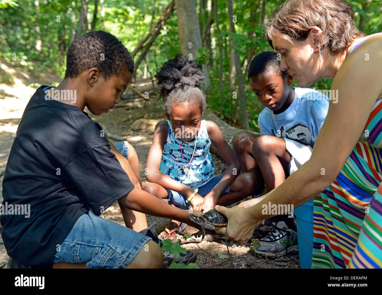 Schwarze Kinder Von New Haven Studieren Eine Gemalte Schildkröte An  Gemeinsamen Boden High School Auf Einer