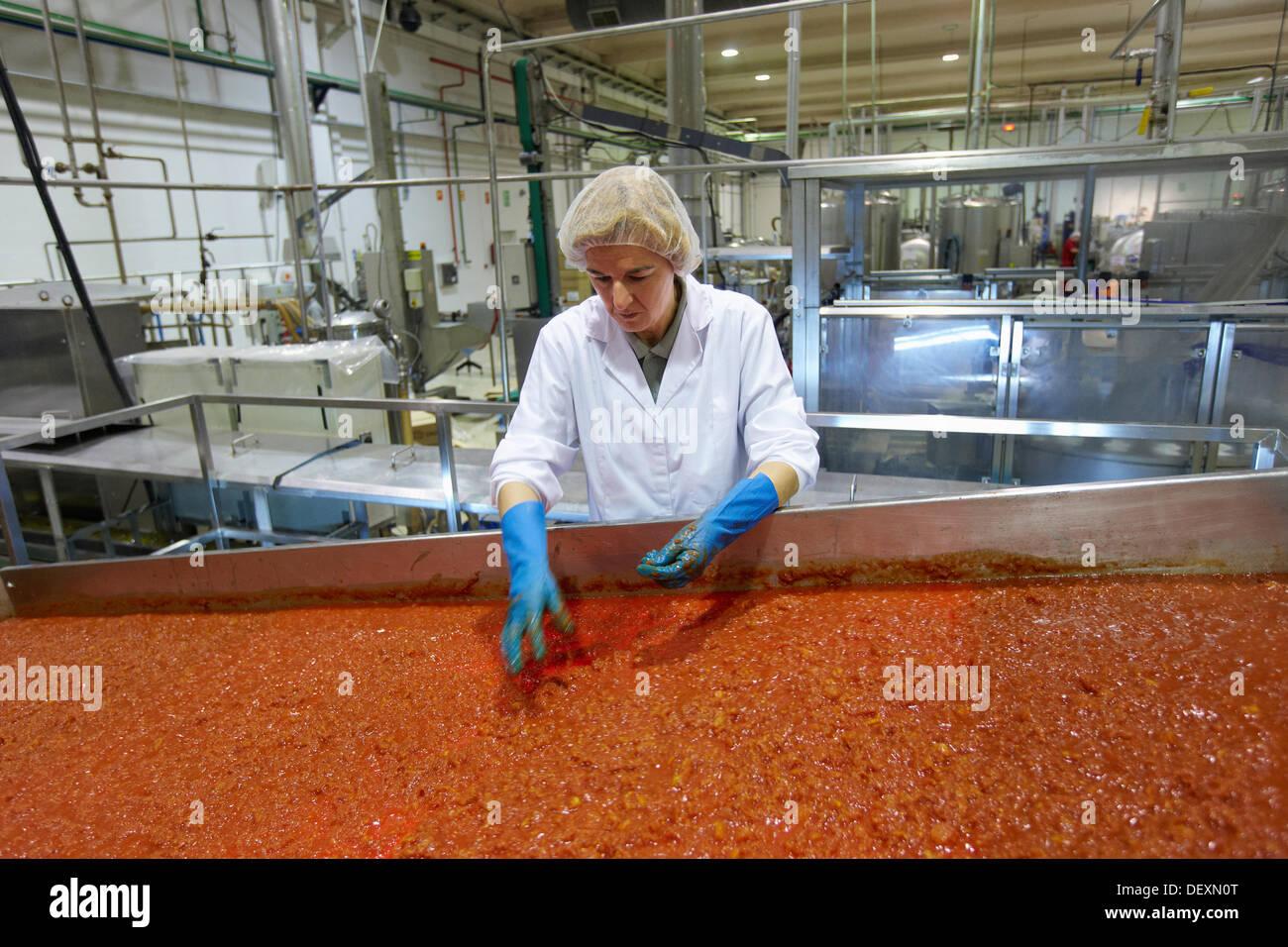 Produktionslinie für eingelegtes Gemüse und Bohnen in Glasflasche, gekochte Tomaten, Konservenindustrie, Agrar-und Ernährungswirtschaft, Navarra, Spanien Stockbild