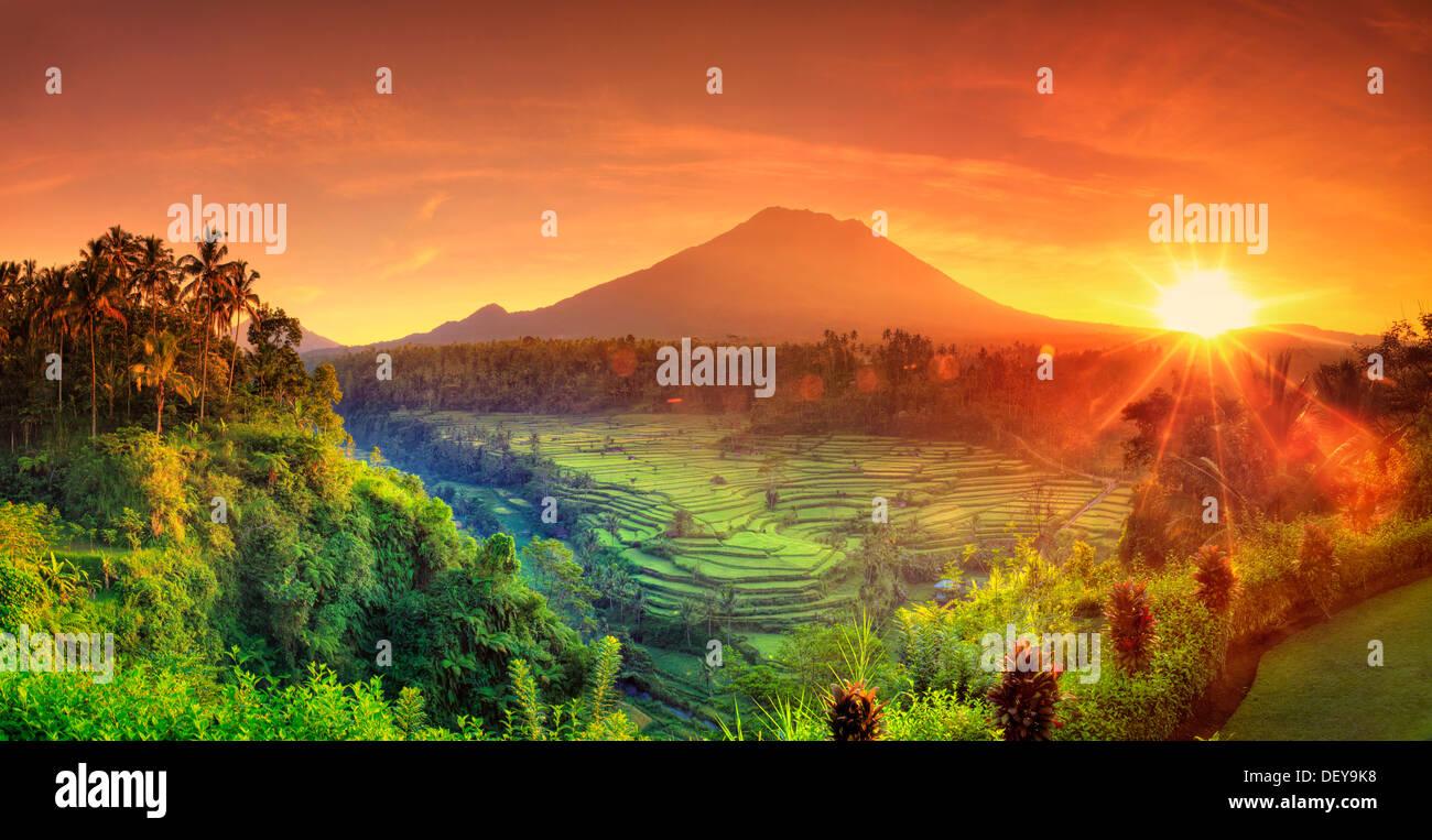 Indonesien, Bali, Redang, Blick auf Reisterrassen und Gunung Agung Vulkan Stockbild