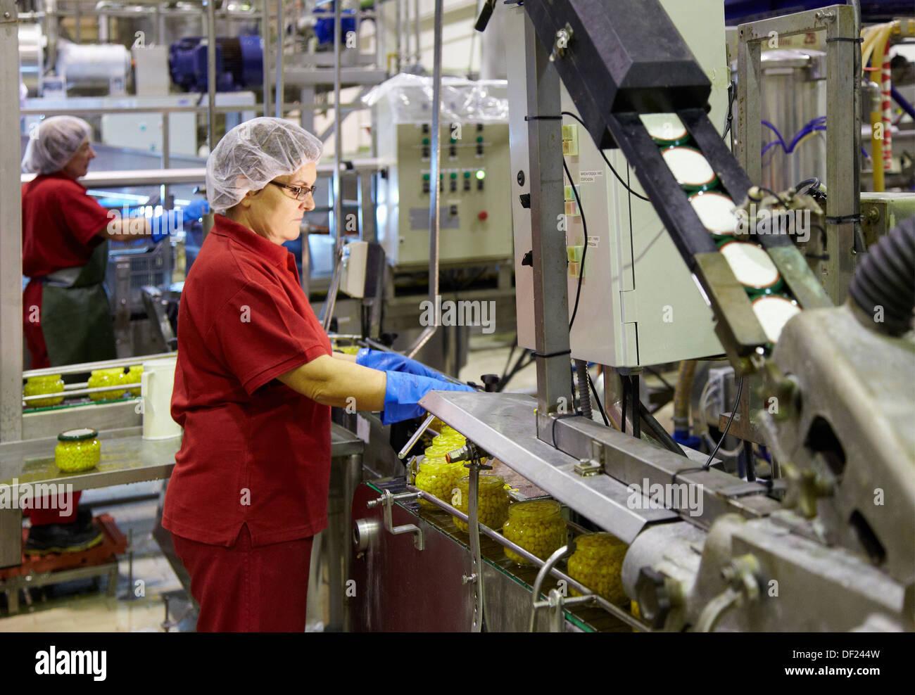 Produktionslinie für eingelegtes Gemüse und Bohnen in Glasflasche, Mais, Mais, Konservenindustrie, Agrar-und Ernährungswirtschaft, Navarra, Spanien Stockbild