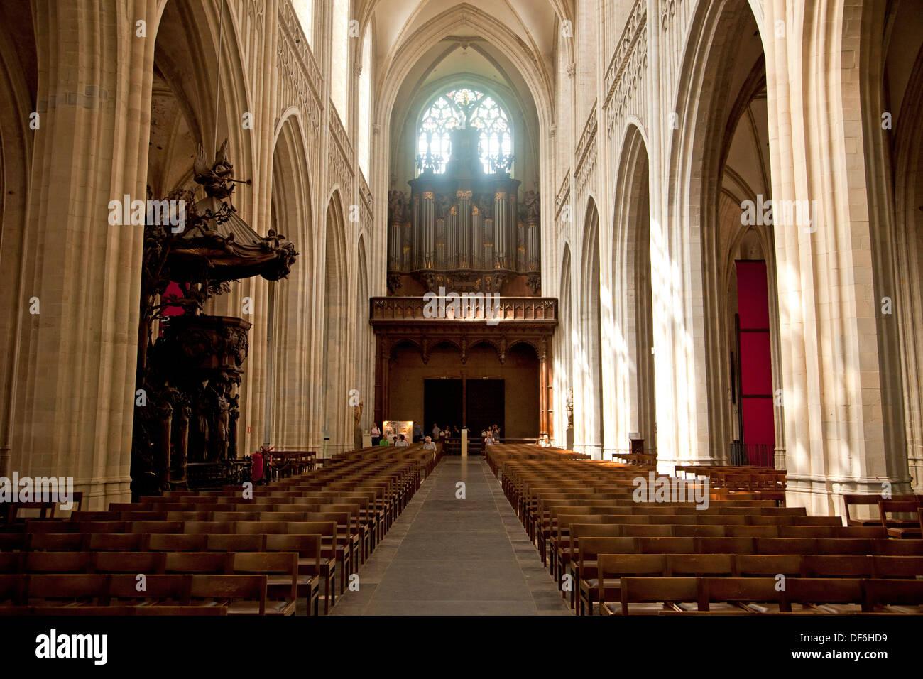 https://c8.alamy.com/compde/df6hd9/interieur-von-der-onze-lieve-vrouwekathedraal-kathedrale-unserer-lieben-frau-in-antwerpen-belgien-df6hd9.jpg