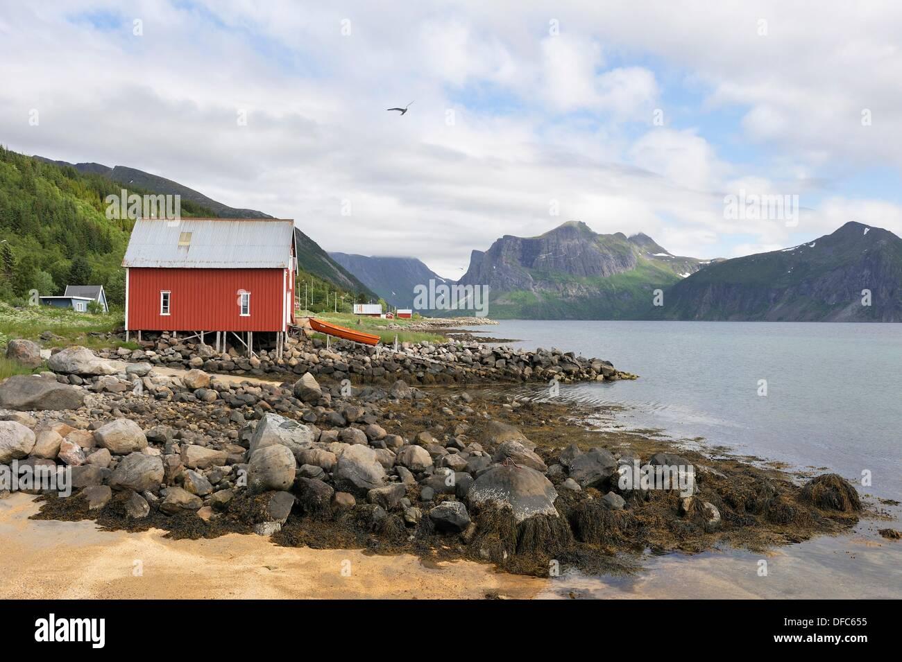 Berg, Insel Senja, Grafschaft Troms, Norwegen, Nordeuropa Stockbild