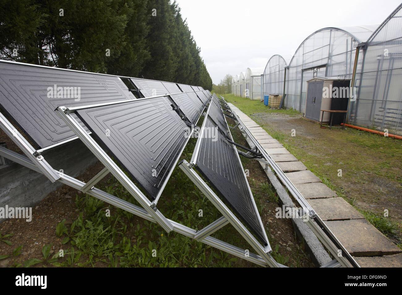 Wunderbar Thermodynamische Kessel Zeitgenössisch - Elektrische ...