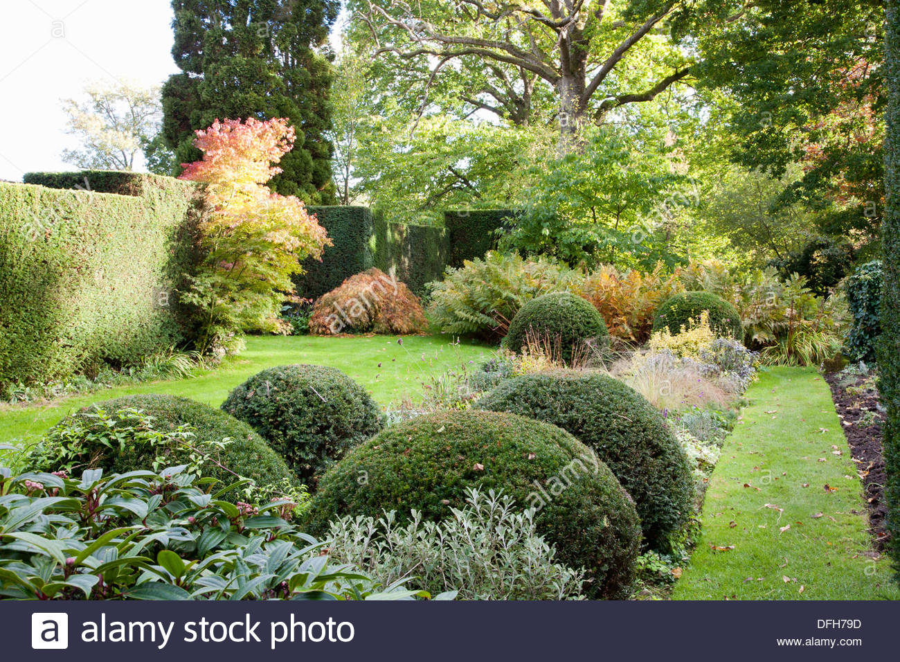 autumn garden stockfotos autumn garden bilder alamy. Black Bedroom Furniture Sets. Home Design Ideas