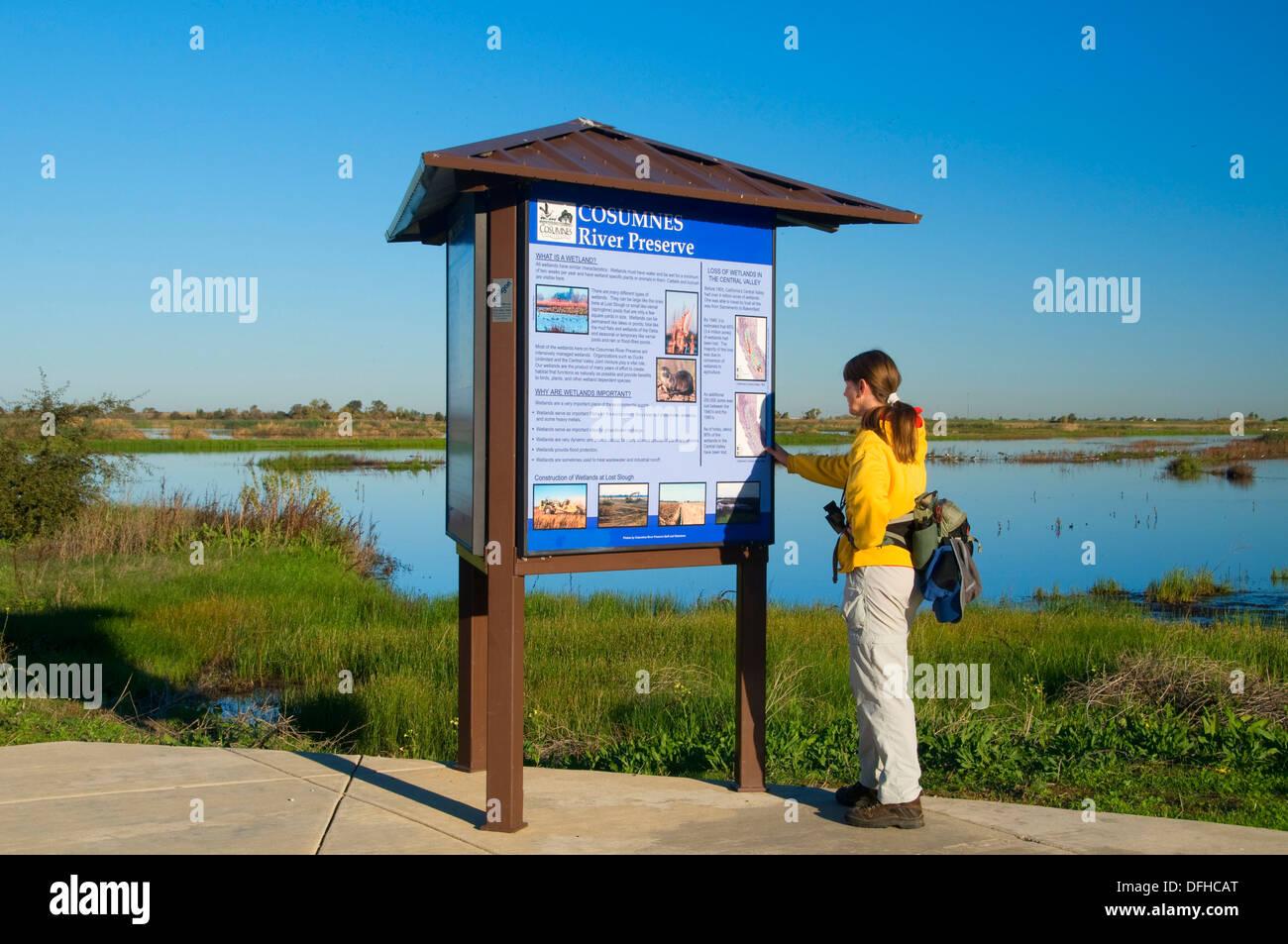 Slough Feuchtgebiete gehen Kiosk, Cosumnes River Preserve, CA verloren Stockbild