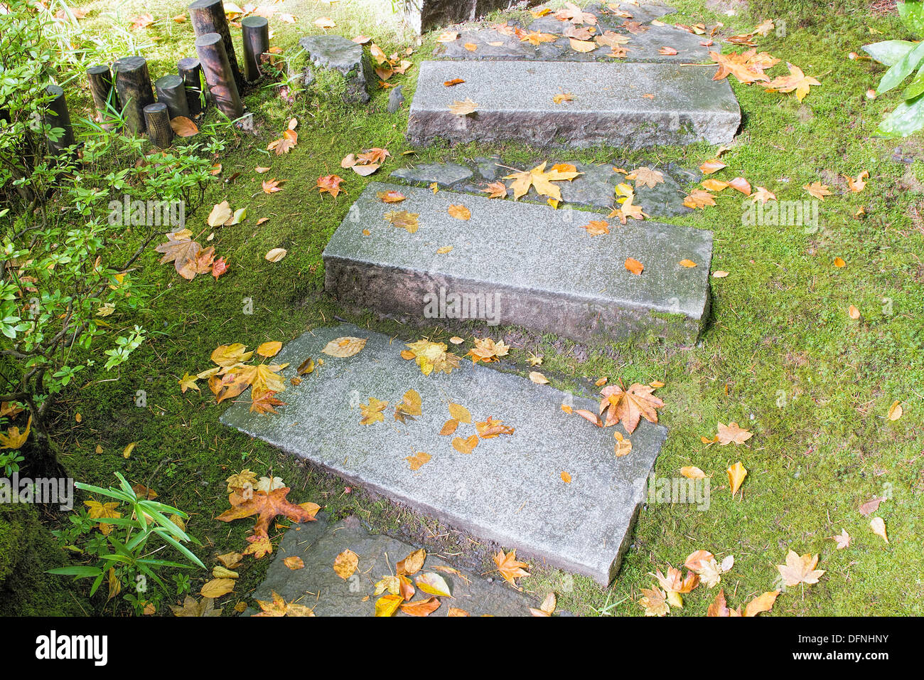 granitplatten garten, asiatisch inspirierten garten granit platten steinstufen mit moos, Design ideen