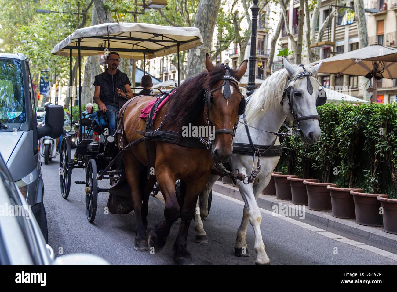 Pferdekutsche auf La Rambla Stockbild