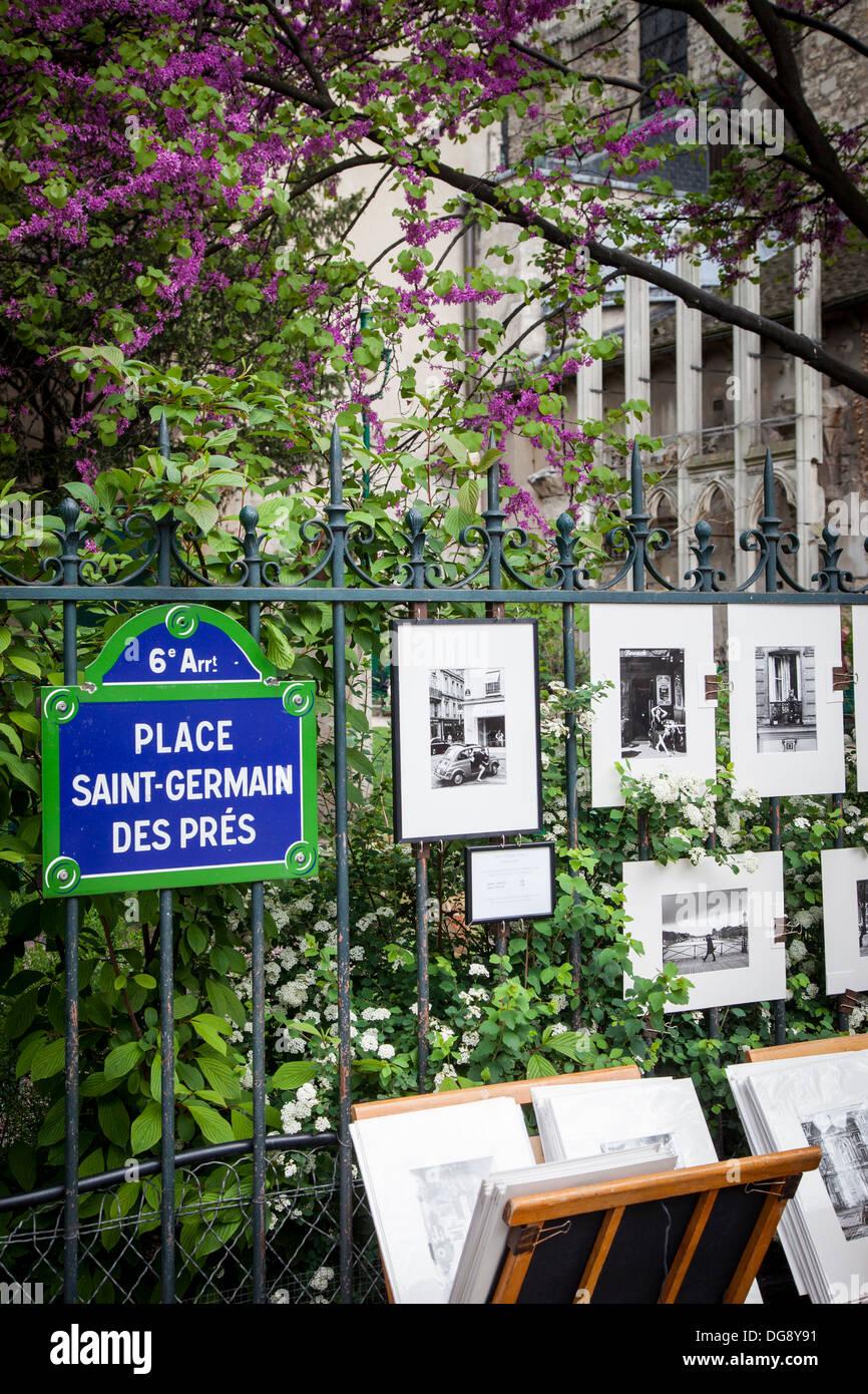 Fotografen druckt auf dem Display in St. Germain des Prés, Paris Frankreich Stockbild