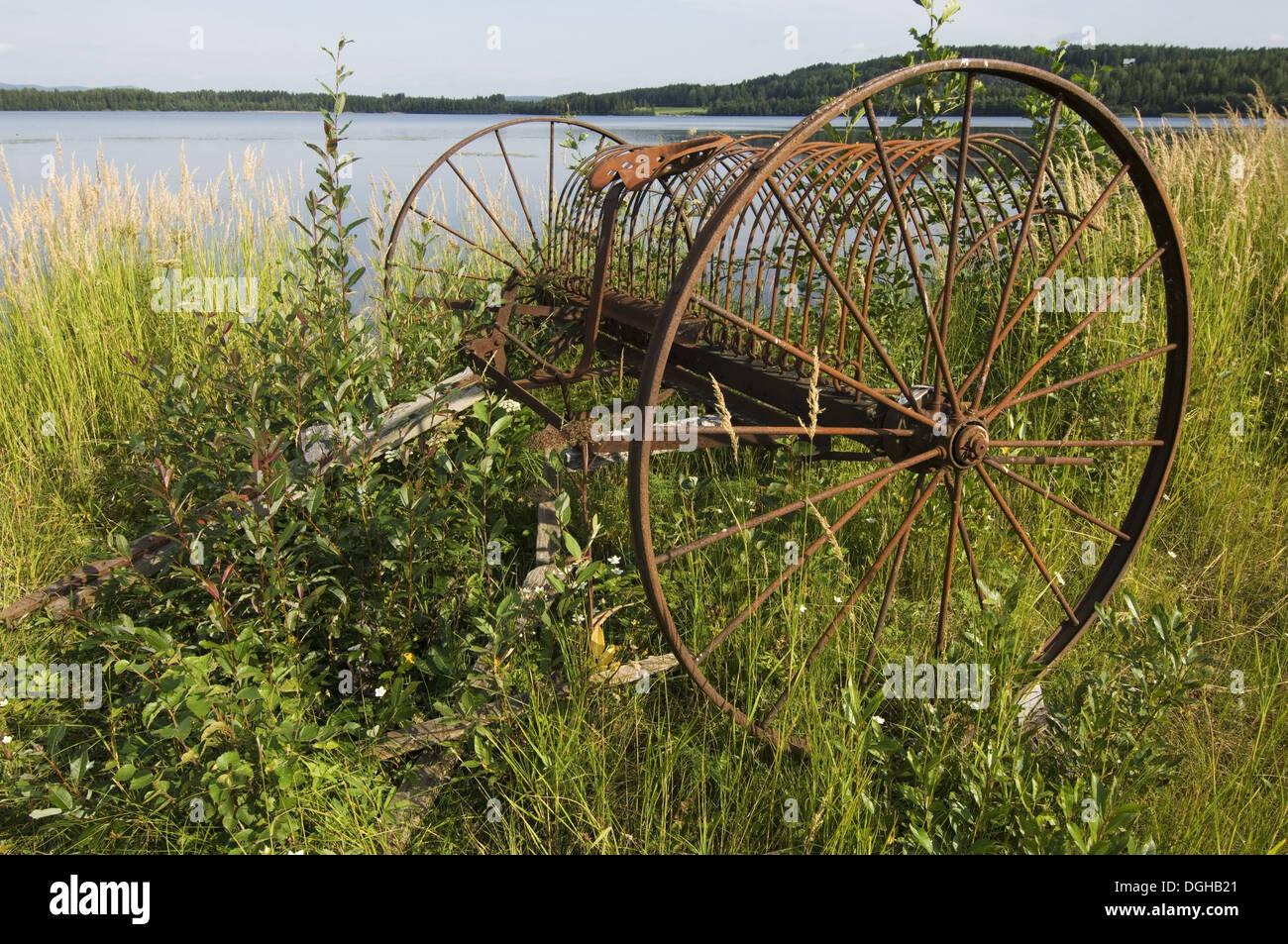Rostige alte Pferdekutsche Heu Rechen, am Rand des Wassers, Schweden Stockbild