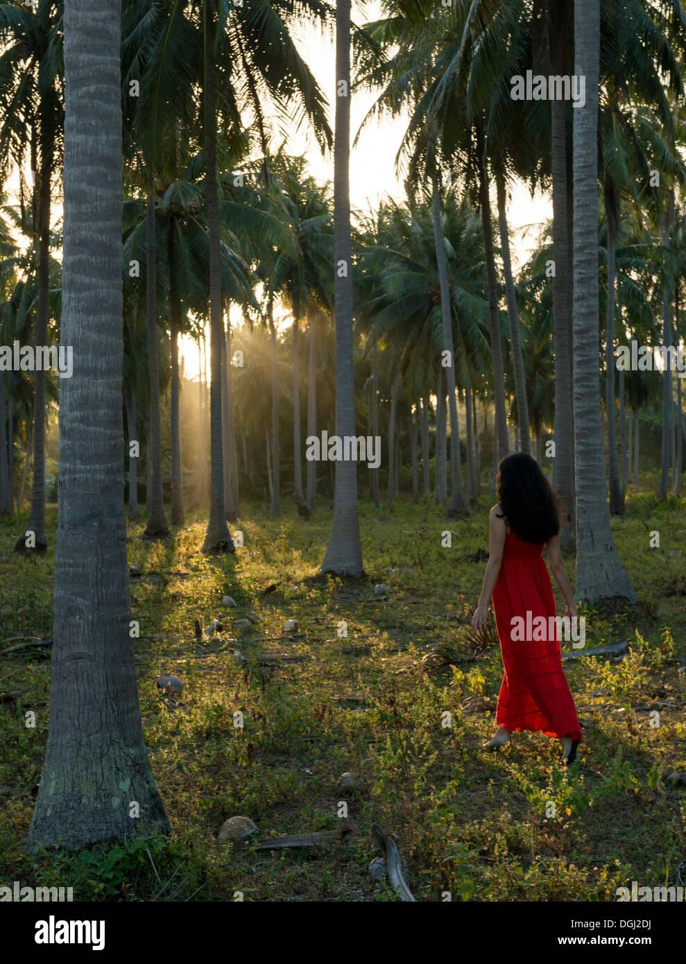 Frau mit rotem Kleid, Wandern im Wald von Palmen Stockbild
