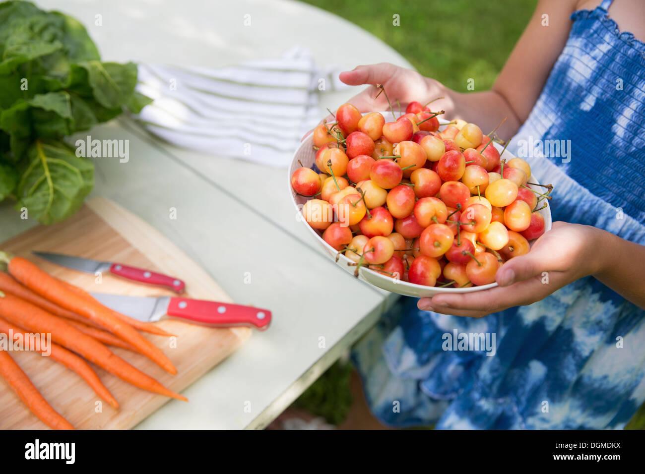 Familienfest. Ein Kind trägt eine Schüssel mit frisch gepflückten Kirschen zu einem Buffet-Tisch. Stockbild