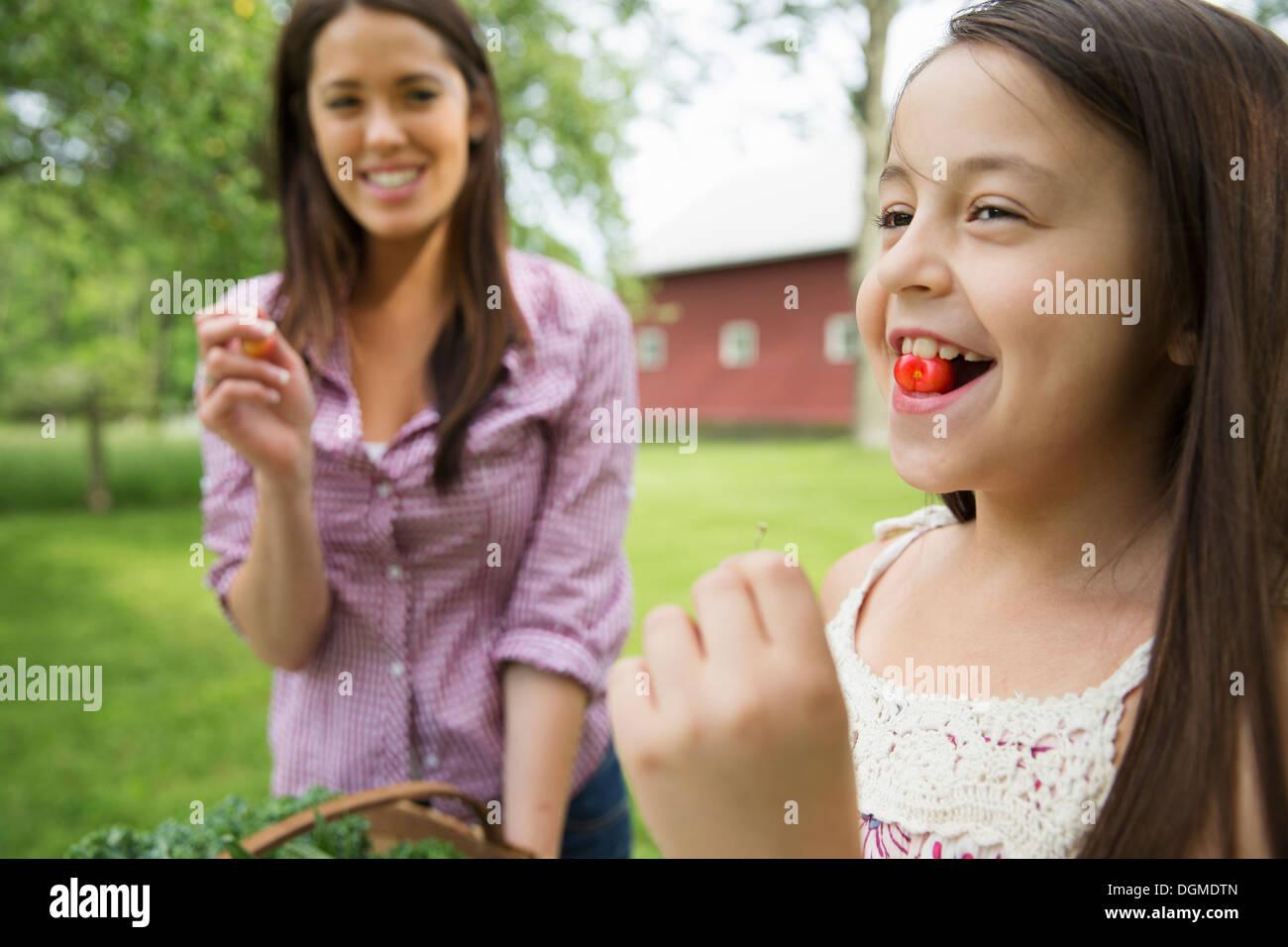Familienfest. Ein Kind mit einer frische Kirschen zwischen den Zähnen. Eine junge Frau, beobachtete sie und lacht. Stockbild