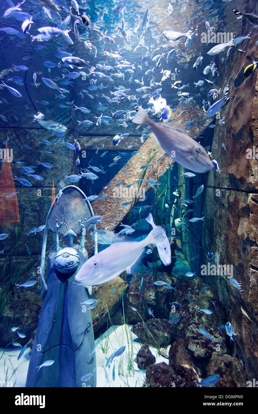 Aquarium in den Lost Chambers, ein Themenpark, basiert auf der Legende von Atlantis, Hotel Atlantis, The Palm Jumeirah, Dubai Stockbild