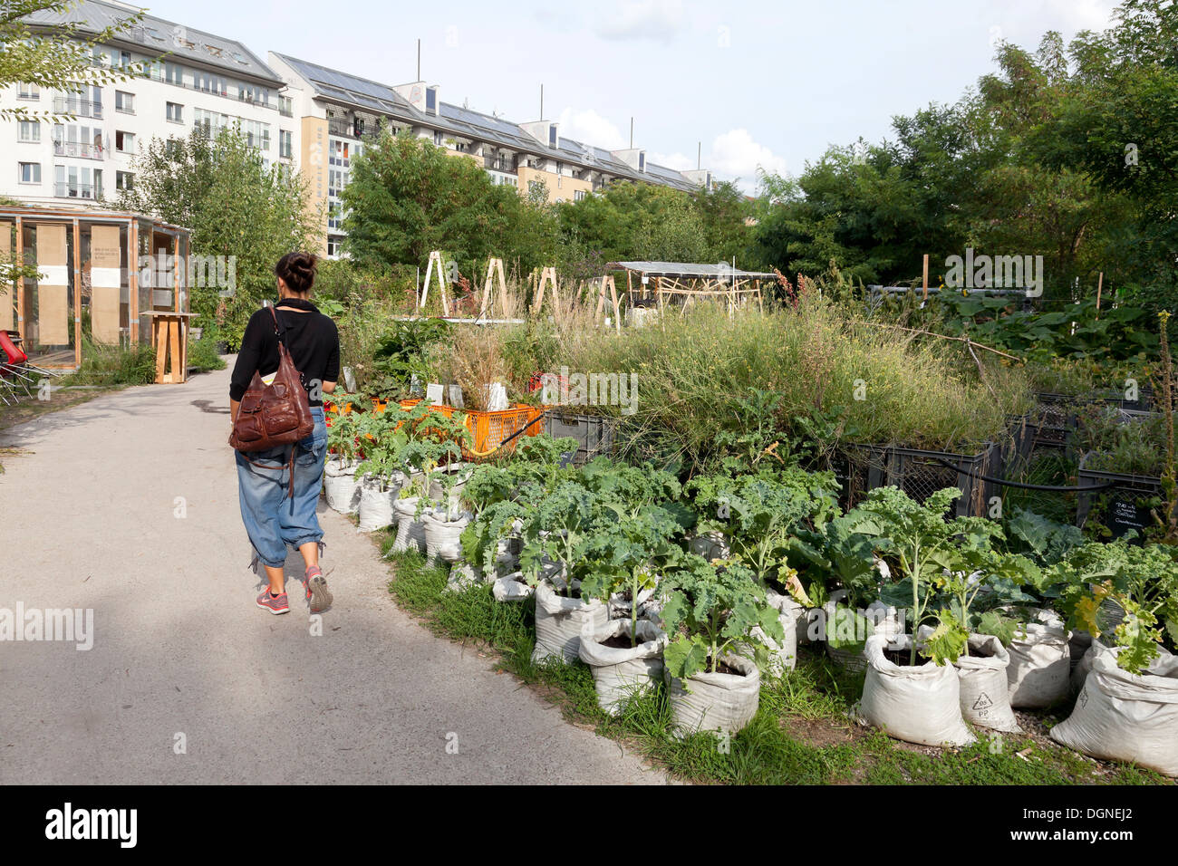 berlin deutschland urban gardening in the princess gardens am moritzplatz stockfoto bild. Black Bedroom Furniture Sets. Home Design Ideas