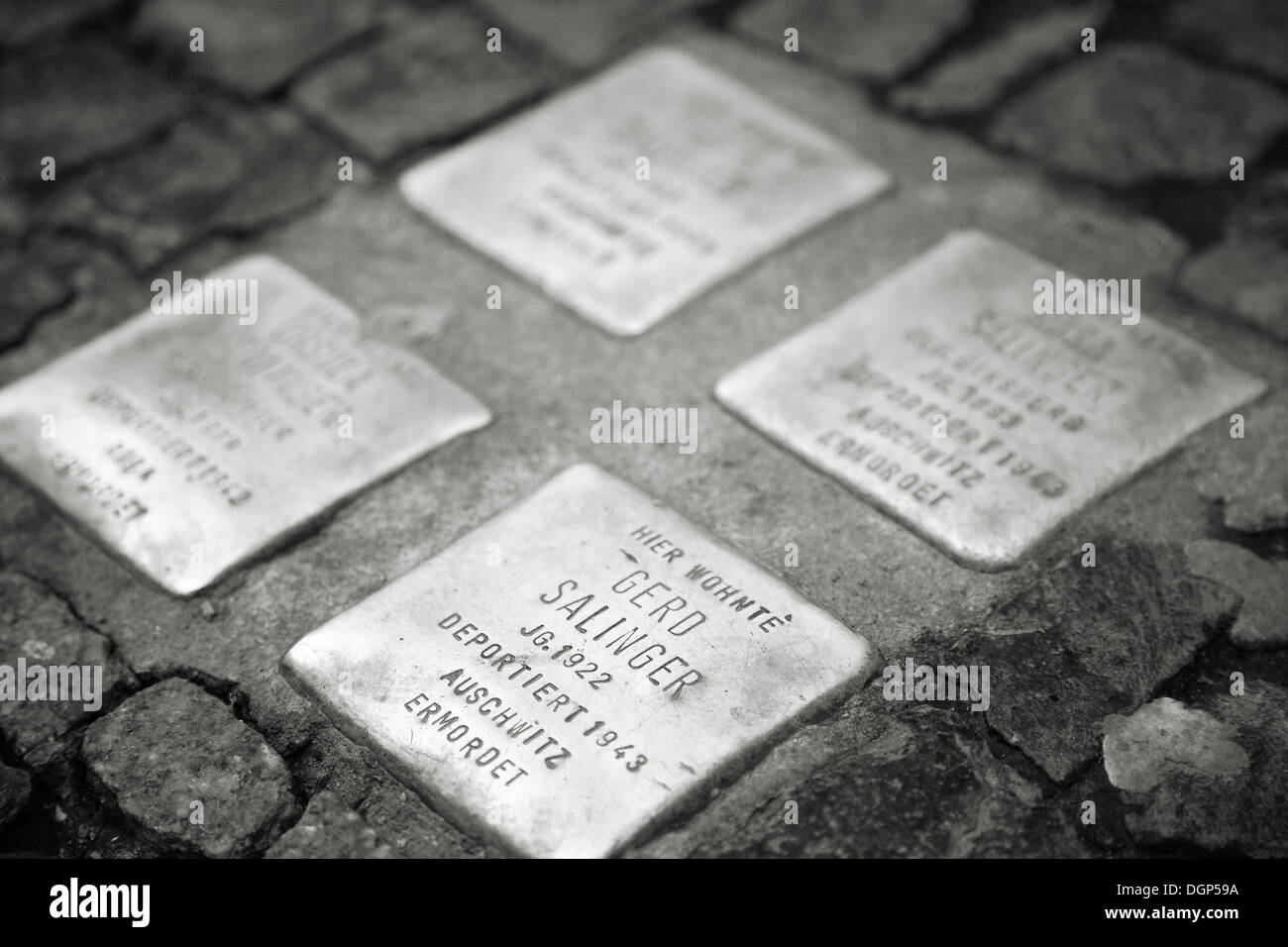 Stolpersteine, Steinen Denkmal für Berliner ermordet während des zweiten Weltkrieges II, Berlin Stockbild