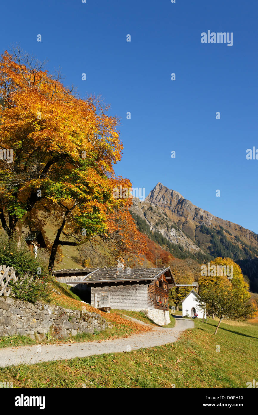 gerstruben mit hoefats berg im herbst oberstdorf oberallg u allg u allg uer alpen schwaben. Black Bedroom Furniture Sets. Home Design Ideas