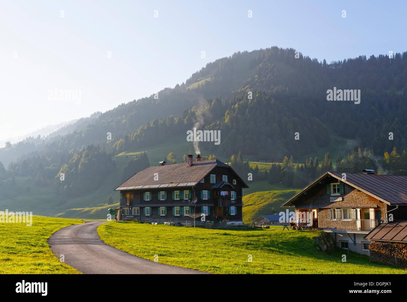 almdorf dorf auf der alm vors sch nenbach bezau bregenzerwald bregenzer wald vorarlberg. Black Bedroom Furniture Sets. Home Design Ideas