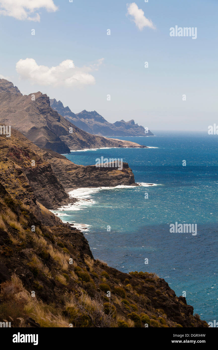 Kliffküste, Agaete, Gran Canaria, Kanarische Inseln, El Risco, Spanien Stockbild