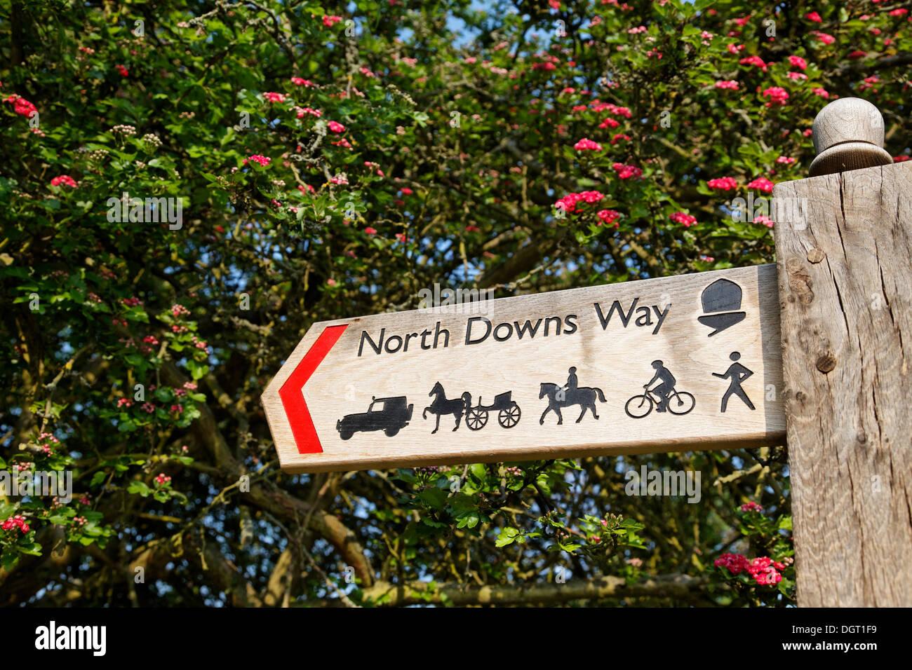 North Downs Way, starten des Weges in die Stadt, Via Francigena, Canterbury, Südostengland, administrative Grafschaft Kent Stockbild