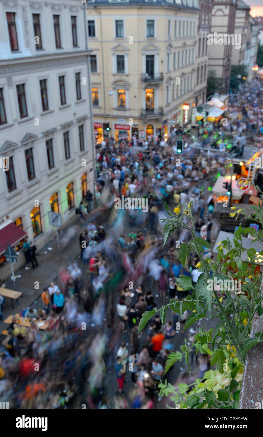 Tomaten Pflanzen Auf Dem Balkon Uber Feiern Tanzenden Menschen Dem