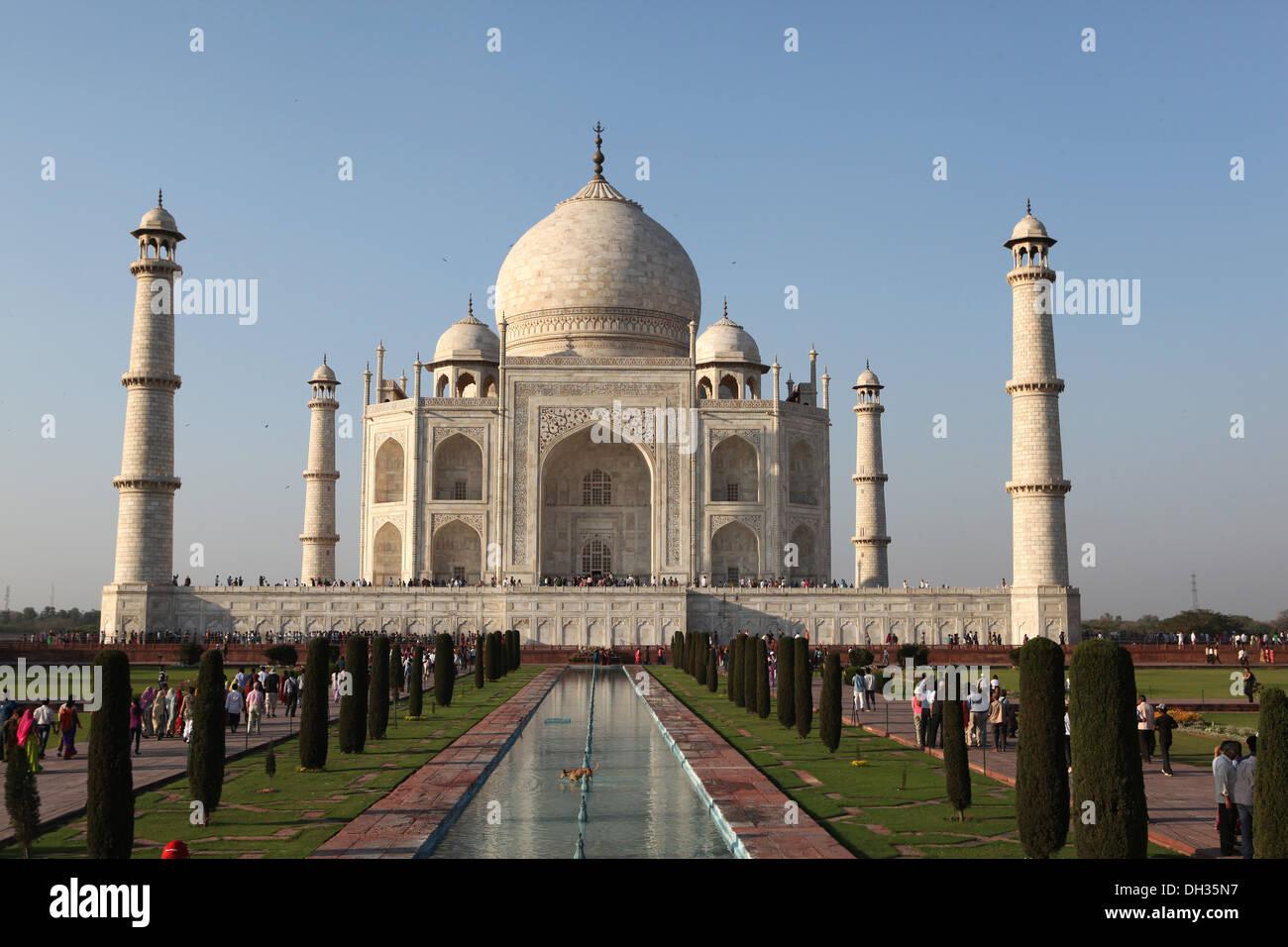 Taj Mahal, Agra, Uttar Pradesh, Indien, Asien Stockbild